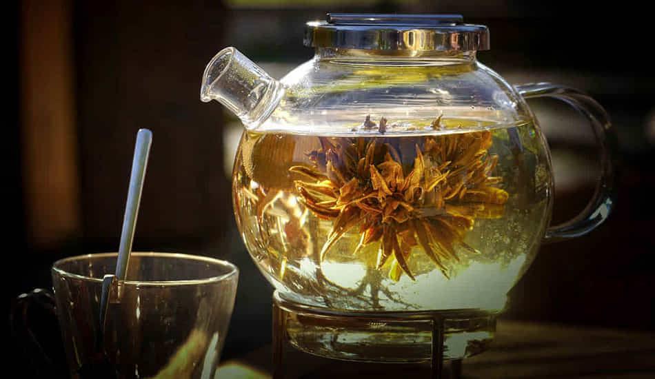 tomar té verde
